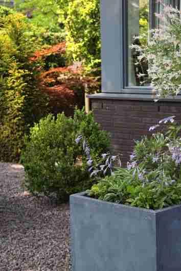 Hovenier Apeldoorn en Vaassen BK Tuinen ontwerp aanleg onderhoudBK Tuinen Hovenier Apeldoorn en Vaassen_047