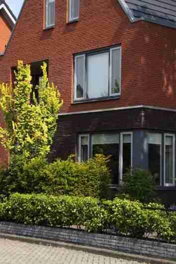 Hovenier Apeldoorn en Vaassen BK Tuinen ontwerp aanleg onderhoudBK Tuinen Hovenier Apeldoorn en Vaassen_057