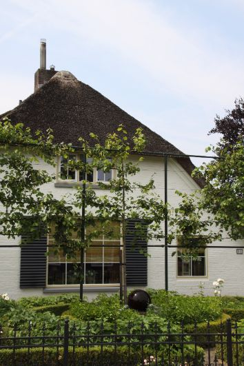 Hovenier Apeldoorn en Vaassen BK Tuinen ontwerp aanleg onderhoudBK Tuinen Hovenier Apeldoorn en Vaassen_089