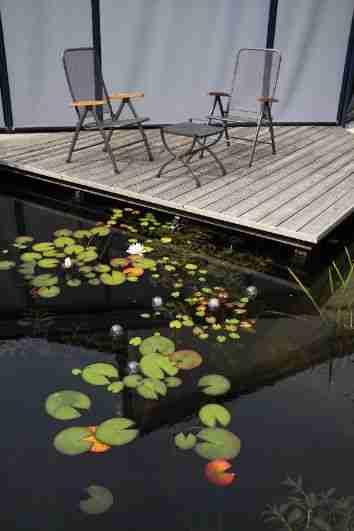 Hovenier Apeldoorn en Vaassen BK Tuinen ontwerp aanleg onderhoudBK Tuinen Hovenier Apeldoorn en Vaassen_155