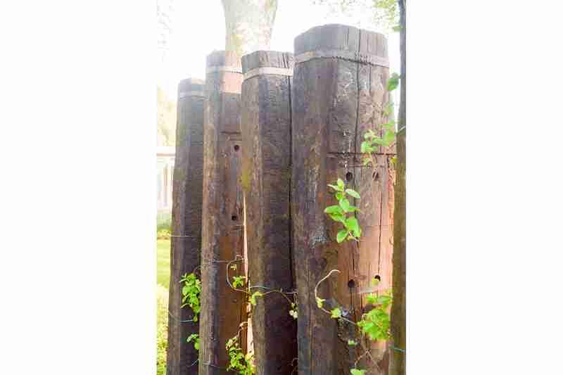 hovenier-apeldoorn-bk-tuinen-dsc_9573