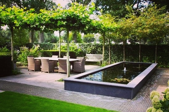 DEKEN VAN GROEN  Door in deze tuin gekozen te hebben voor veel bomen ontstaat een ontspannen sfeer. Onder de dakbomen kun je lekker in de schaduw vert