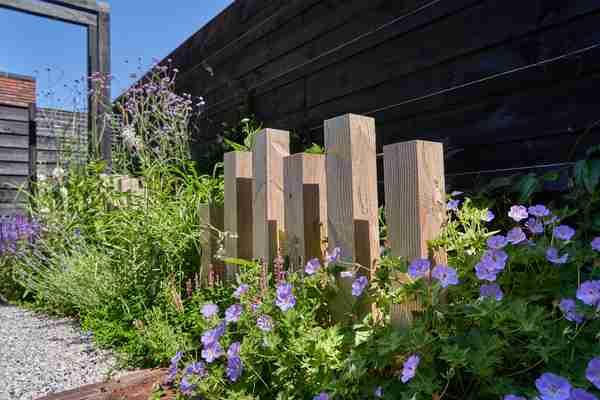 natuur en steen elementen in de tuin