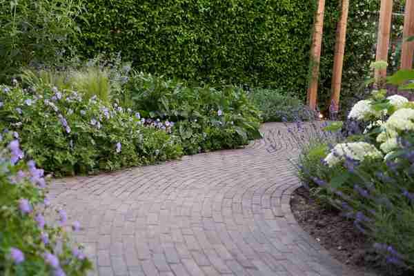 een gestrate tuin met lavendels