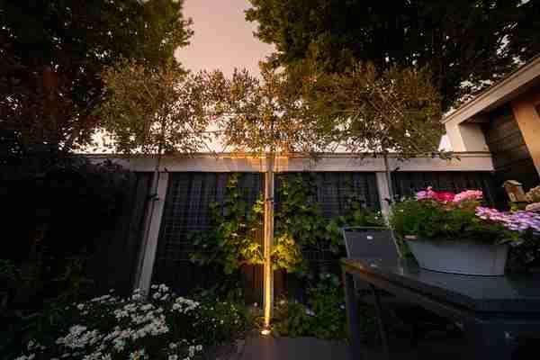 verlichtingselement in een donkere tuin